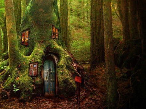 Soul's Tree House